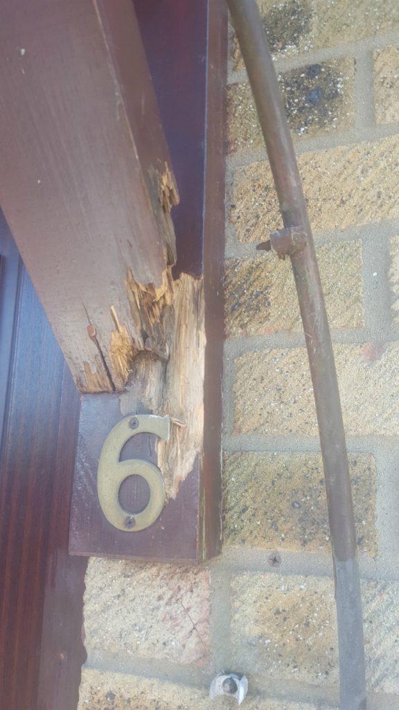 Exterior wood repair Essex